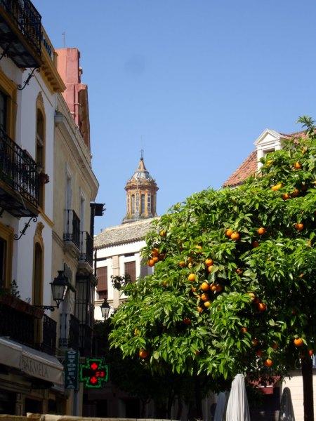 orangesweb